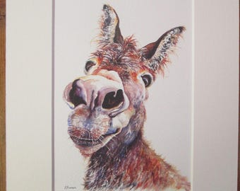 Watercolour print of my donkey, Doreen. Printed directly onto watercolour paper.