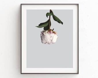 Flower Art Print, Flower Art, Large Poster Art, Minimalist, Flower Wall Print, Flower Wall Poster