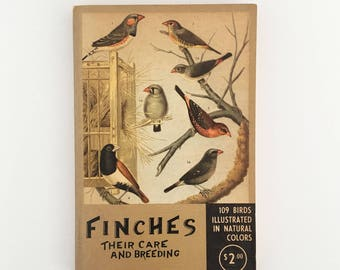 Finches - illustrated bird book (1955)