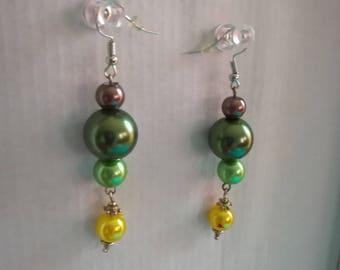 1 fancy earrings