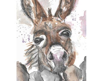 Print of Watercolour and Ink Drawing Painting Donkey