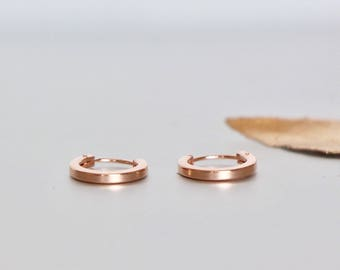 10mm Rose Gold Hoops, Minimalist Ear Hoops, Delicate Rings For Ears, Piercing Hoops, Tiny Body Hoops, Gift Earrings, Cartilage Hoops,(E23P)