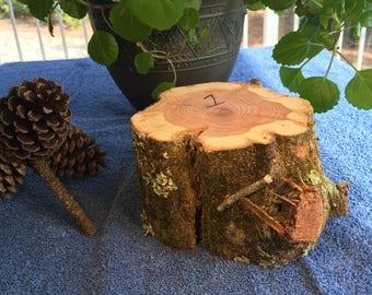 Raw Block of Aromatic Cedar #1