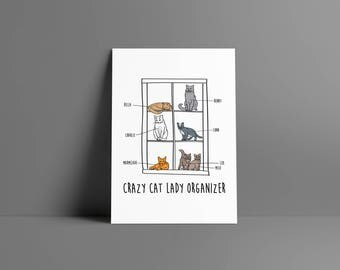 The boy • Cat organizer