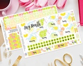 Lemon and Lime Happy Planner Any Month Planner Sticker Kit, Sunday or Monday Start, Mambi, Summer, Hydrate, Fruit