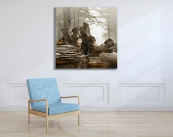 Northwest Beach Driftwood Metal Print for Home or Office Decor, Tranquil Zen Photo, Ready to Hang Wall Art, FREE SHIPPING in the usa