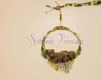 Digital Prop Digital Backdrop, Mossy woodland hammock for newborn composite