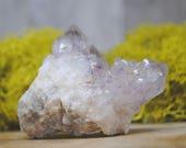 Amethyst Cactus Crystal Cluster  - Spirit Fairy Quartz  1201.76