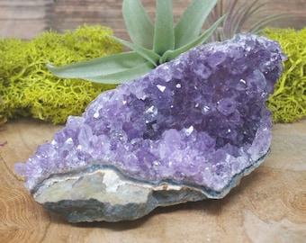 Purple Amethyst Crystal Cluster  -  1200.55