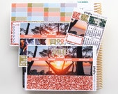 June Monthly Kit (stickers for Erin Condren Life Planner)