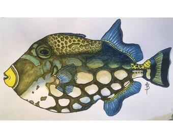 Tropical Fish Print