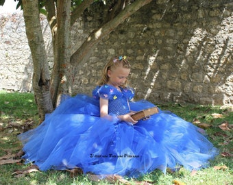 Princess dress, inspired by the movie Cinderella
