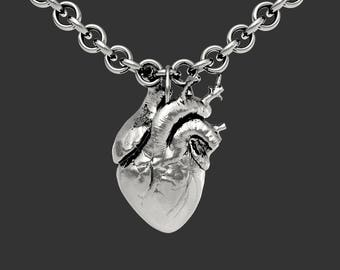 The Anatomical Heart