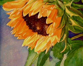 Sunflower Solo, watercolor painting print art giclee, home decor, art collectors, Phyllis Nathans