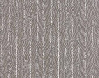 Kitten Lines in Grey - Catnip by Gingiber - Moda cotton fabric - half yard or more