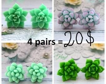 succulent earrings, succulent set, cactus earrings, succulent stud, succulent flowers, mint earrings, earrings stud, succulent jewelry, gift
