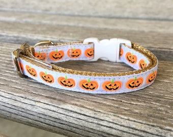 Little Pumpkin Cat Collar, Jack O Lantern Cat Collar, Kitten Collar Halloween, Kitty Collar White
