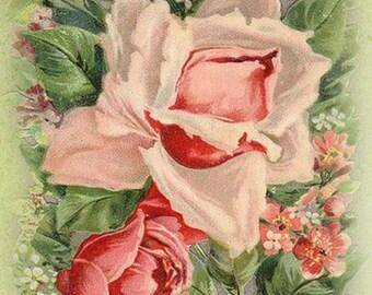 Pink Rose Address Book