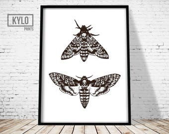 Death's Head Moth Print, Butterfly Wall Art, Moth Printable Art, Death Head Moth Illustration, Minimalist Poster, Silence of the Lambs Print
