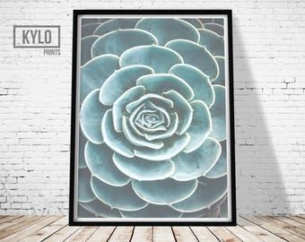 Cactus Print, Printable Art, Photography Print, Wall Art, Home Decor, Cactus Art, Instant Download, Cactus Printable, Photography Art, Gift
