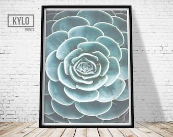 Cactus Print, Printable Art, Photography Print, Wall Art, Home Decor, Cactus Art, Instant Download, Cactus Printable, Photography Art, Gift