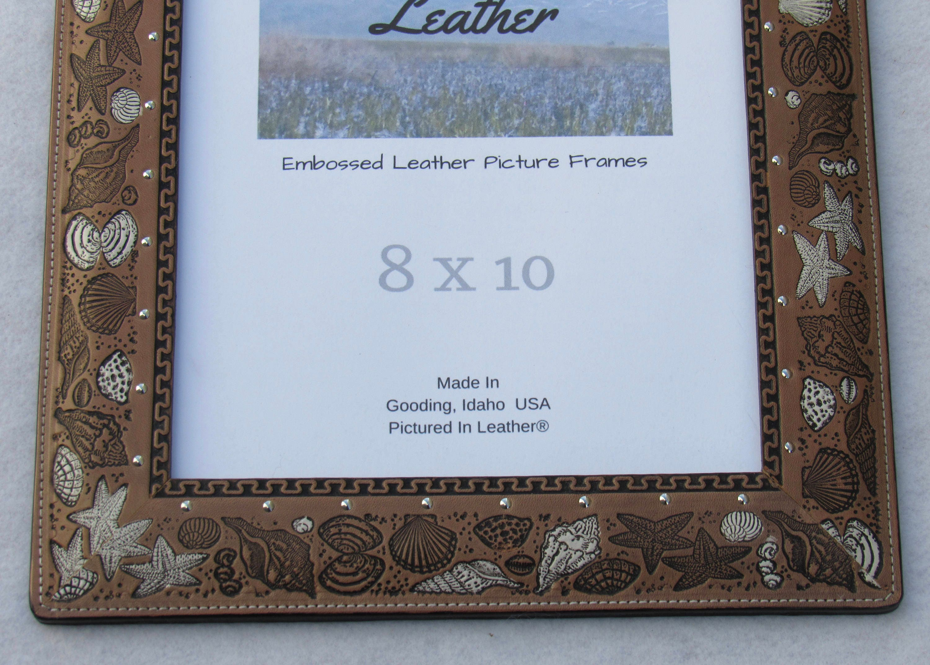 8x10 leather photo frame beach picture frame seashell picture shipping jeuxipadfo Images
