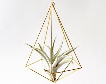 Himmeli Decahedron No02 für Luftpflanze Pflanzenhänger Pflanzenhalter Geschenkidee geometrisch deko