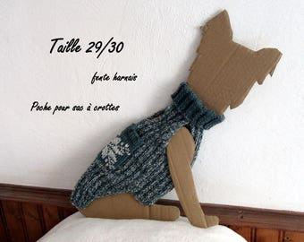 Green sweater for yorkshire or chihuahua