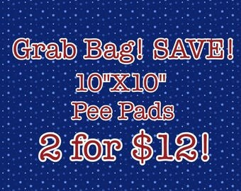 """Grab Bag--(2) 10""""x10"""" Pee Pads for Guinea Pigs, Hedgehogs, and Other Small Pets!"""