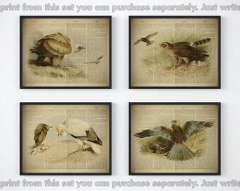 Bird print set, Dictionary print set, Set of 4 bird print, Horizontal print, Antique bird illustrations, Instant downlad printable art, JPG