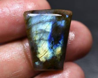 Natural Blue Fire LABRADORITE Fancy Shape Cabochon Loose Gemstone 17x22x5mm 17 Cts (2986)