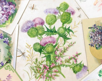 Hand Painted Victorian Thistles and Dragonflies Silk Letter Folder