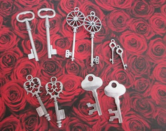 10 2.9 to 6.4 cm A silver key charms