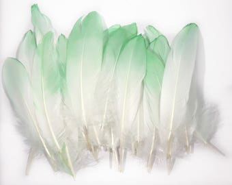 6-8 inch Green dip died Natural Goose Feathers