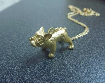 collar dog bulldog
