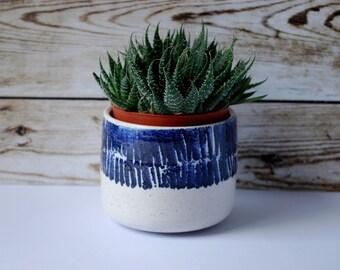 Pier - cobalt blue and white ceramic planter, plant pot, interior, pottery