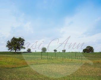 Farm Field Vintage Summer Digital Photography Backdrop Background