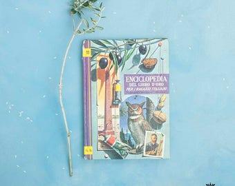 Volume illustrato enciclopedia per ragazzi anni 60 n. 11   Illustrated encyclopedia volume for boys 60s n. 11