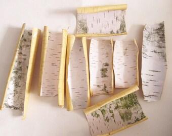 Birch Bark, Natural Birch Bark Sheets Craf, 8 White Birch Pieces, Forest Supplies, Natural Decor