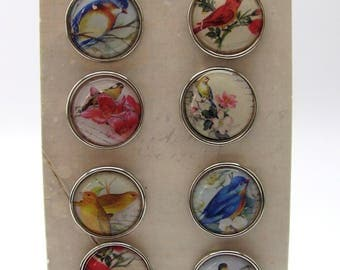 Set of 9 big brads - birds