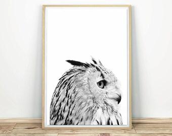 Owl Wall Art - Owl Decor, Printable Wall Art, Owl Nursery Decor, Wildlife Art, Owl Wall Print, Owl Poster, Modern Wall Art, Black And White
