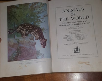 Vintage book, animals of the world, j. Walker mcspadden