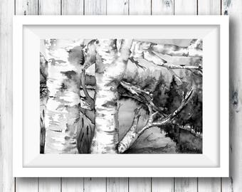 "Silver birch watercolor painting, black and white , print of original ""View from the silver birch"", Forest painting, trees, lake view"