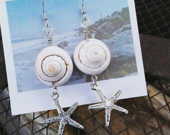 Spiral shell, starfish drops