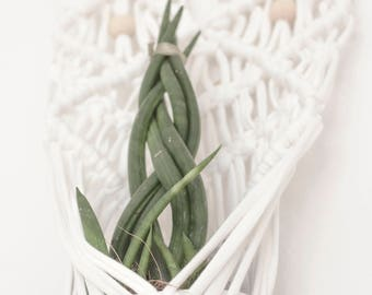 confetti_macrame wall hanging / plant hanger