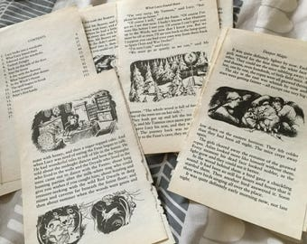 15 x The Lion, The Witch and The Wardrobe vintage book pages. Scrapbooking, collage, junk journal, smash book, card making, craft