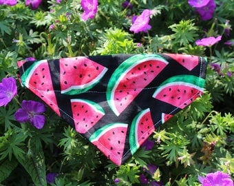 Summer Watermelon Bandana