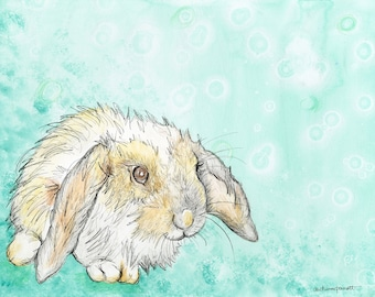 Lop Eared Rabbit (Giclee Print)