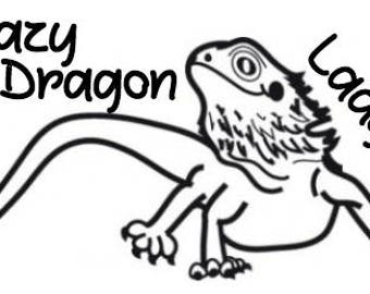 Crazy Dragon Lady