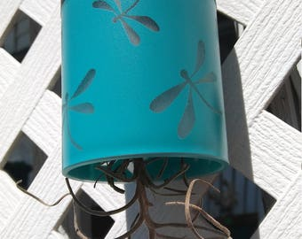 Air Plant Solar Light
